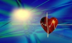 The pulse of a heartbeat is one of the most recognized vital signs.